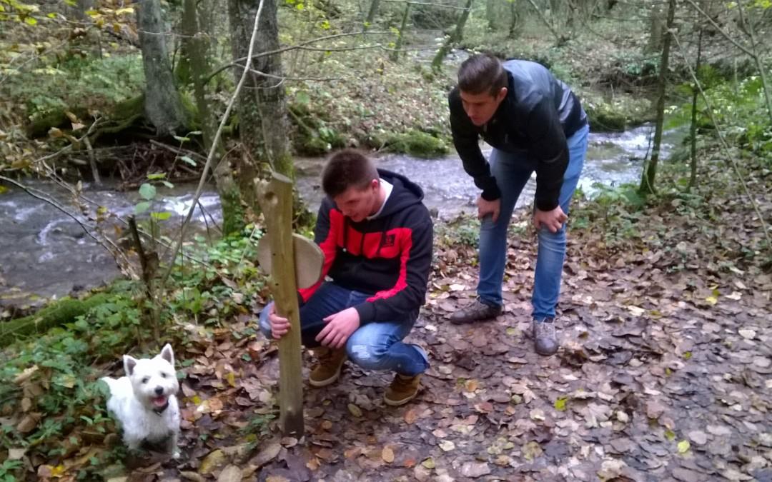Pohod ob divjem potoku