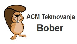 Zelo uspešni na tekmovanju ACM Bober